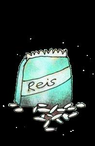 Reis 3